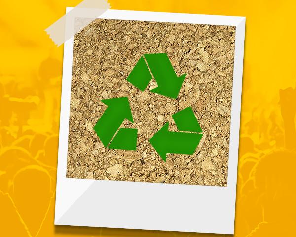 ecoseventos-botecao-sustentavel