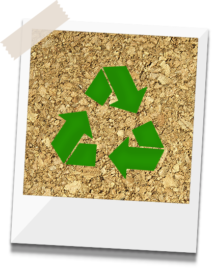 ecoseventos-botecao-sustentavel-polaroid